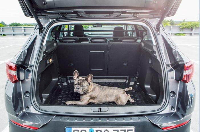 Opel grandland x krijgt accessoires for Auto onderdelen interieur